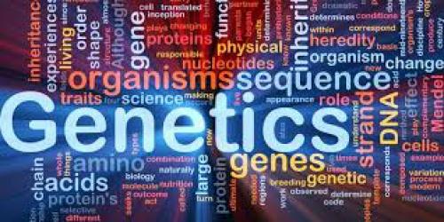 تحقیق درباره داربست های پلیمری برای طب بازسازی و توزیع ژن (مهندسی بافت)