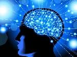 2093543x150 - تحقیق درباره چگونه حافظه خود را تقویت کنیم؟
